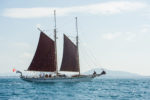 DALLINGHOO under Sail